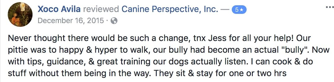 "Canine Perspective Facebook review ""Never thought there would be such a change, tnx Jess for all your help! Our pittie was to happy & hyper to walk, our bully had become an actual ""bully"". Now with tips, guidance, & great training our dogs actually listen. I can cook & do stuff without them being in the way. They sit & stay for one or two hrs"""