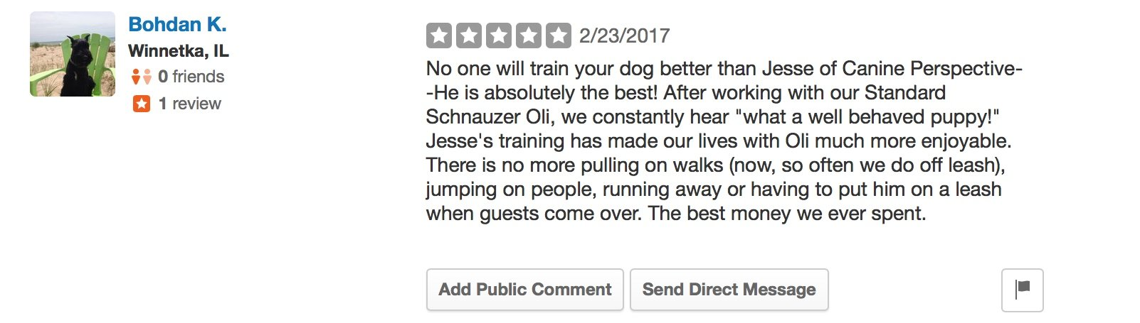 """Canine Perspective Yelp review """"No one will train your dog better than Jesse of Canine Perspective--He is absolutely the best! After working with our Standard Schnauzer Oli, we constantly hear """"what a well behaved puppy!"""" Jesse's training has made our lives with Oli much more enjoyable. There is no more pulling on walks (now, so often we do off leash), jumping on people, running away or having to put him on a leash when guests come over. The best money we ever spent."""""""