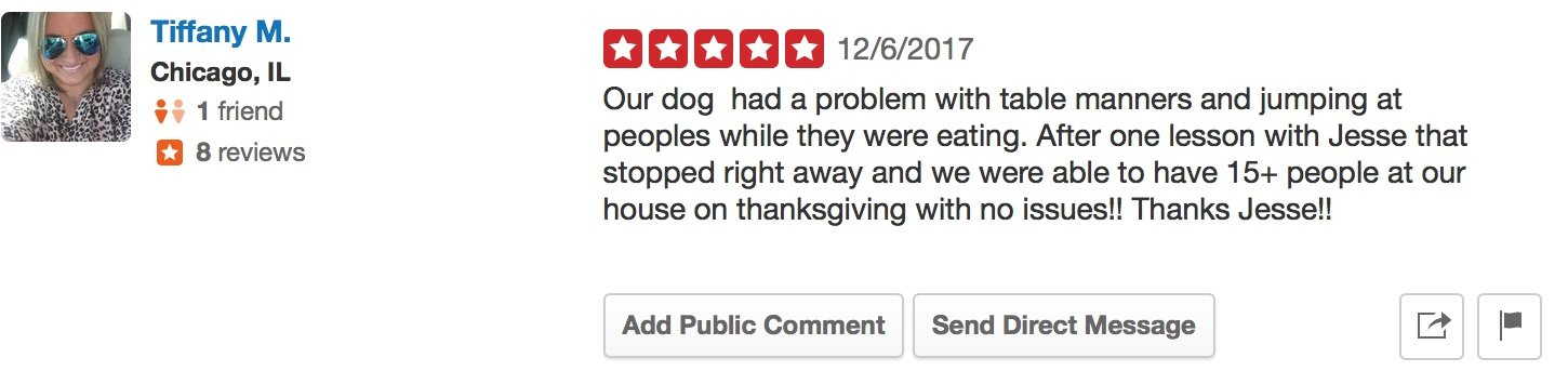 Canine Perspective yelp review our dog had a problem with table manners and jumping at people while they were eating. One lession with Jesse that stopped right away and we were able to have 15+ people at our house on Thanksgiving no issues.
