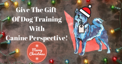 Banner image for dog training gift certificate