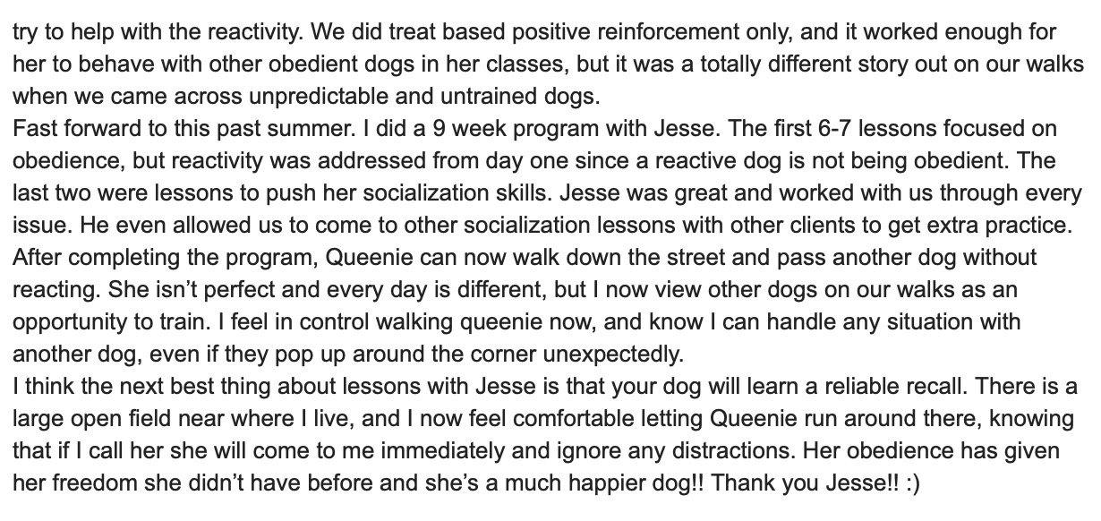 Dog Reactive Dog