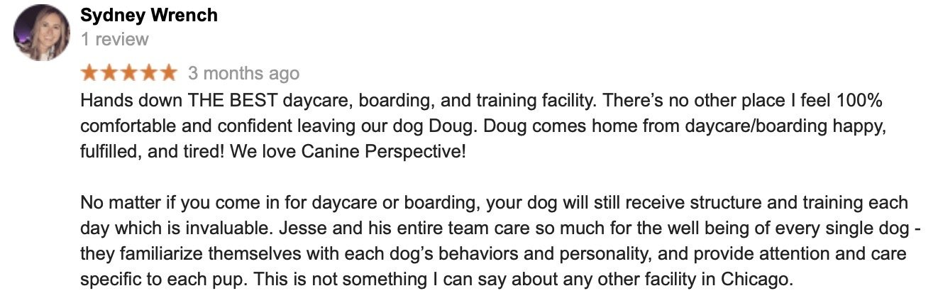 Dog Daycare Chicago